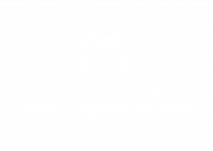 logo_millennium_W